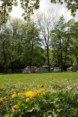 Campsite Nord-West Impressions - Meadow
